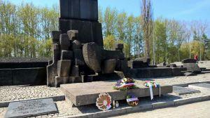 Bergen - Belsen