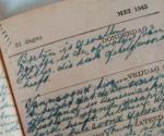 Het oorlogsdagboek van Bets van Driel