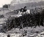 Bijeenkomst fam.Wouters t.g.v. 50 jaar bevrijding
